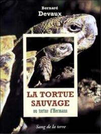 La tortue sauvage ou Tortue d'Hermann