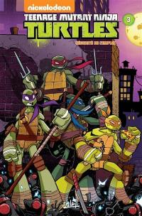 Teenage mutant ninja Turtles. Volume 3, Sécurité de l'emploi