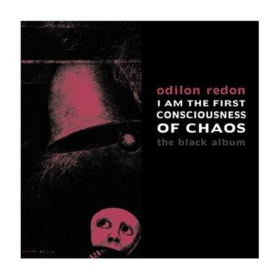 I am the first consciousness of chaos
