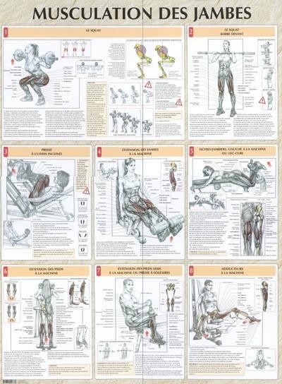 pourquoi la musculation arrete la croissance Works Only Under These Conditions